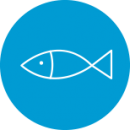 icon_fish-sector
